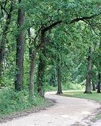 Eberly Park